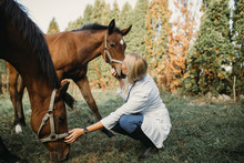 Veterinarian With Horses Outdoors In Nature.