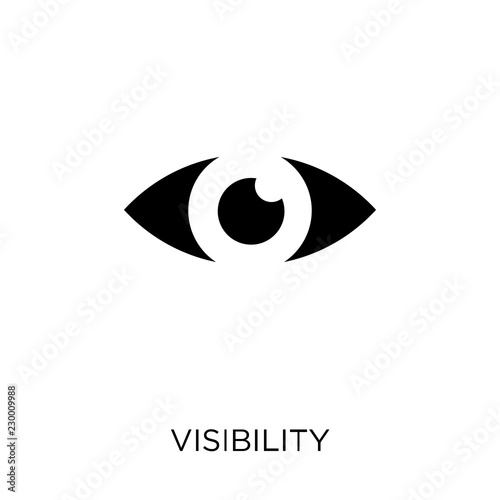Cuadros en Lienzo Visibility icon. Visibility symbol design from SEO collection.