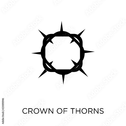 Carta da parati Crown of thorns icon