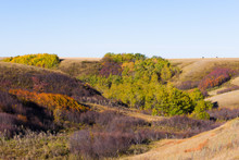 Changing Colours On The Prairies
