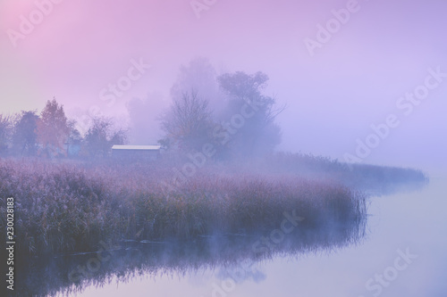 Beautiful rural morning landscape. Lakeshore in the magical misty morning. Beautiful fairytale nature