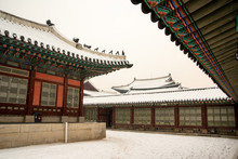 The White Snow Fell Gyeongbok Palace, Seoul, South Korea