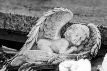 Closeup Of Stoned Angel Sleeping On Tomb At Cemetery