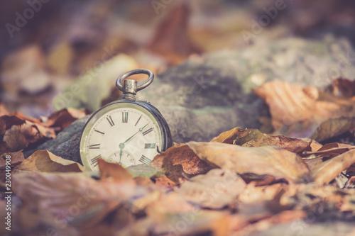 Retro Taschenuhr auf Steinuntergrund, braune Blätter, Herbst, Symbol für Zeit Wallpaper Mural
