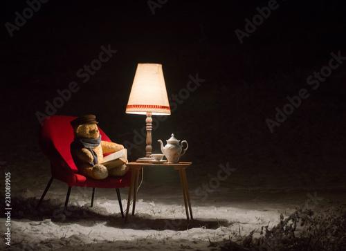 Fotografie, Obraz  Teddy bear read a book outside in a winter night - surreal scene