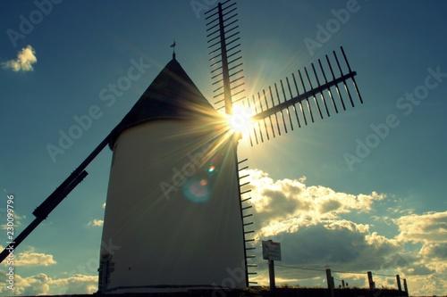 Foto op Plexiglas Molens moulin de jard-sur-mer en vendée,sous le soleil d'automne