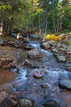 Autumn In Acadia National Park, Maine USA