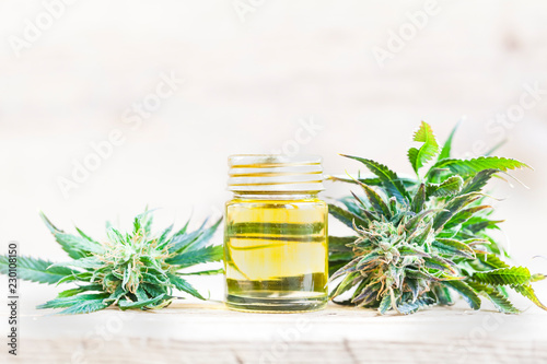 Fototapeta close up recreation marijuana medical cannabis oil cbd obraz