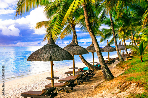 Tropical vacation. beautiful beach scenery with palms and beach chairs