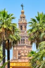 Giralda Tower Of Seville Cathe...