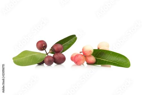 Fotografia  Karonda Fruit isolated on white background