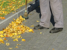 Janitor Sweeping The Fallen Leaves On Autumn Street. Cleaning Leaves In The City, Street Sweeper With Broom, Shadow On Pavement