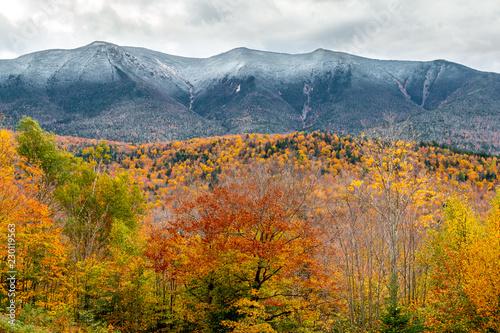 Fotografie, Obraz  A beautiful fall landscape with amazing foliage