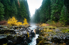 Rogue River Flowing Through Farewell Bend Campground In Oregon