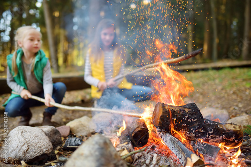 Fototapeta Cute little sisters roasting hotdogs on sticks at bonfire. Children having fun at camp fire. Camping with kids in fall forest. obraz