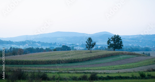 Foto op Canvas Wit Late sunset summer landscape