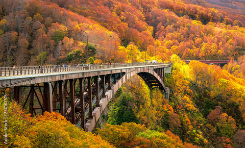 Jogakura Bridge in Aomori Prefecture with Autumn Leaves background Canvas Print