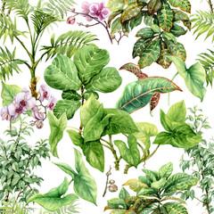 Fototapeta Liście Watercolor Tropical Plants Seamless Pattern