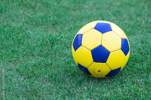 Deurstickers Bol Yellow soccer ball on the lawn.