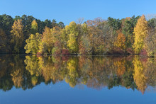 Autumn Landscape With Yellow, Red And Green Trees Reflecting In The Calm Water Of A Forest Lake In The Morning