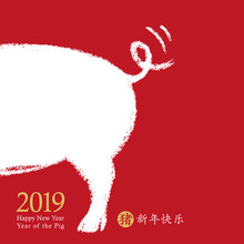 2019 Chinese New Year Of The P...