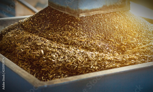 Fotografía  Production of rapeseed oil, processing of oilseed rapeseed, supply of rapeseed o