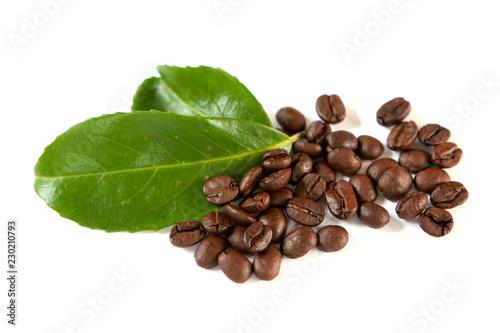 Fotografie, Obraz  feuille et grain de café