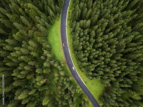 aerial veiw village in alpine forest. drone shot