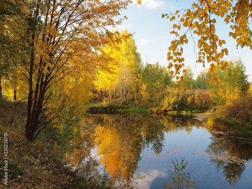 Fototapety, obrazy: Autumn park, trees, river bay. Russian autumn nature. Russia, Ural, Perm region