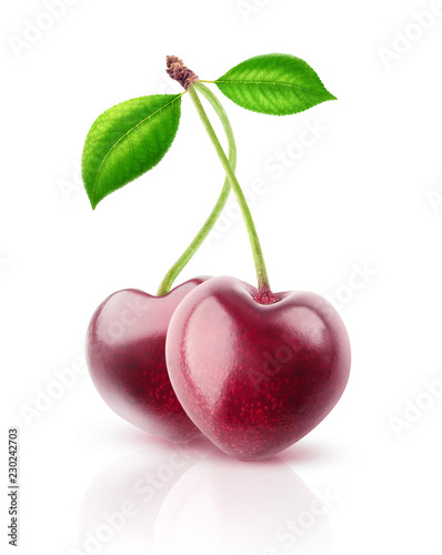 Two isolated berries. Pair of heart shaped cherry fruits on a stem isolated on white background with clipping path