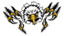 An Eagle Bird Sports Mascot Ca...