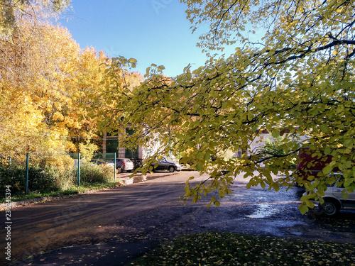Keuken foto achterwand Begraafplaats Sunny autumn in the city.