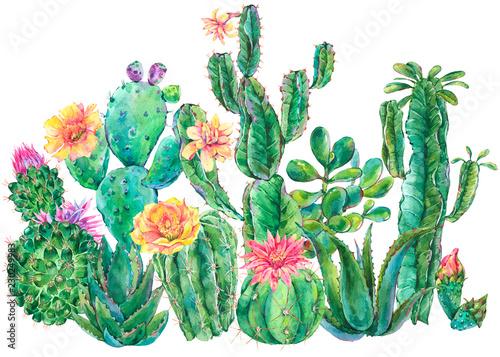 Leinwandbilder - Exotic natural vintage watercolor blooming cactus greeting card