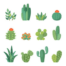 Cartoon Colorful Cactus And Su...