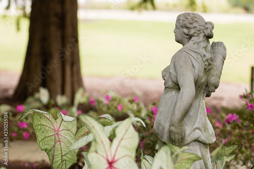 Fotografie, Obraz  statue in garden