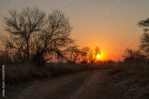 Stickers pour portes Orange eclat African sunset taken over a gravel road, trees and bushes