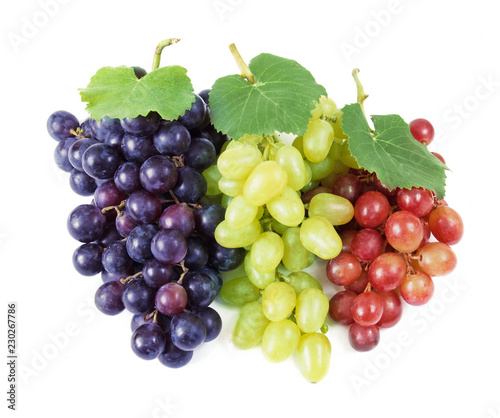 tasty grapes branch