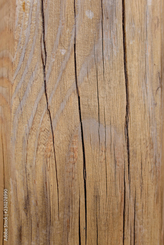 Türaufkleber Holz Cracked solid wood. Wood texture. Wooden background. Old tree. Natural aging of wood.