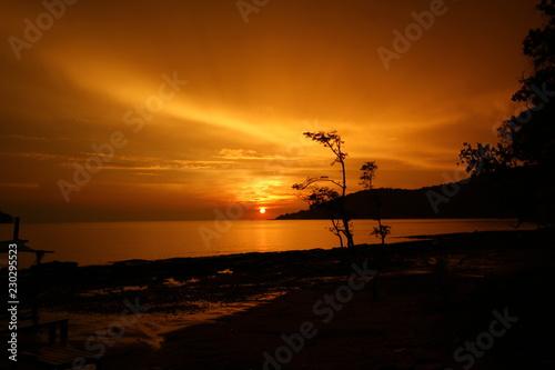Poster Marron chocolat Sunrise