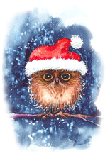 Cute Little Owl Wearing Red Christmas Cap, Sitting On Branch Under Snow. Original Watercolor Illustration For Greeting Cards.