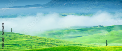 Idyllic view, foggy Tuscan hills at sunrise
