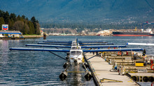 Row Of Float Planes At Dock In...