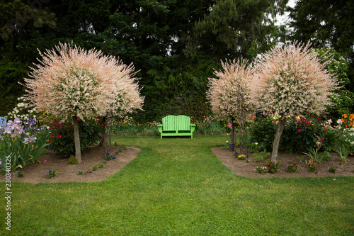 Fotografia, Obraz  Elevated level perspective of English style garden path of mowed lawn, mixed flo