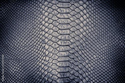 Foto op Plexiglas Krokodil Luxury snake skin texture