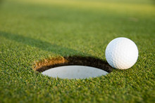 Golf Ball About To Score