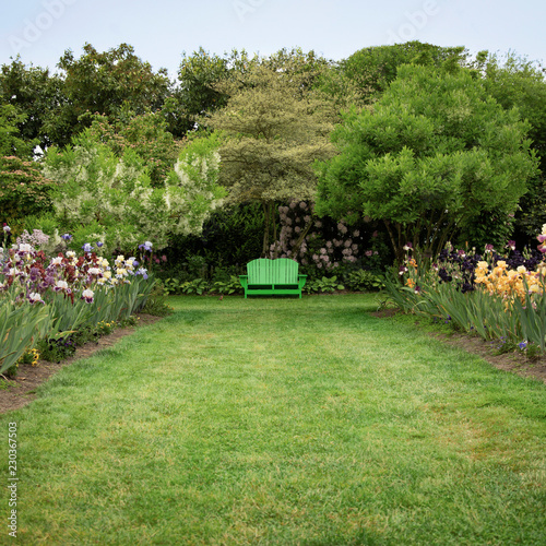 Fotografia, Obraz  Isolated view of English style garden path of mowed lawn, mixed flower beds, tre