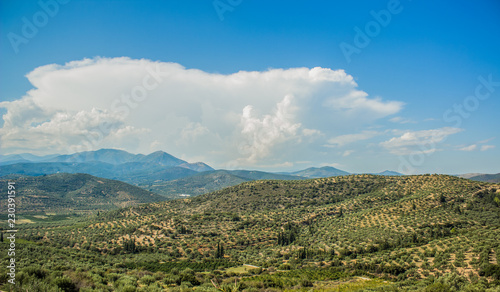 summer forest mountain landscape panorama with bright blue sky