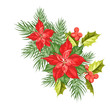 Composition of red poinsettia flower isolated over white background. Holidays ard with poinsettia red star. Vector illustration.