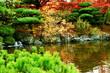 北海道、札幌、平岡樹芸センターの紅葉の風景
