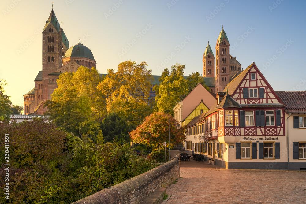 Fototapety, obrazy: Dom zu Speyer im Herbst